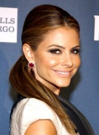 file_3161_maria-menounos-long-chic-brunette-ponytail-hairstyle-275