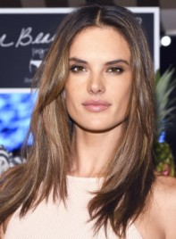 file_4243_Alessandra-Ambrosio-_Medium-Straight-Brunette-Chic-Hairstyle-Pictures-275