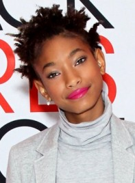 file_5359_Willow-Smith-Short-Black-Edgy-Hairstyle-Braids-Twists_-275