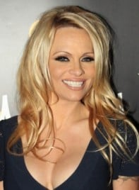 file_59156_pam-anderson-long-sexy-tousled-blonde-hairstyle-275