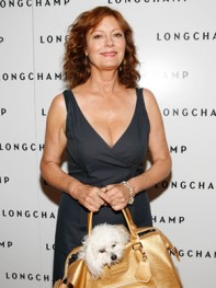 file_34_8401_celebs-who-look-like-their-dogs-susan-sarandon-14