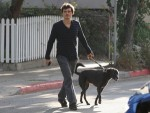 file_80_8401_celebs-who-look-like-their-dogs-orlando-bloom-03