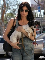 file_82_8401_celebs-who-look-like-their-dogs-selma-blair-05