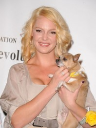 file_8_8401_celebs-who-look-like-their-dogs-katherine-heigl-07