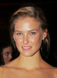 file_59780_bar-refaeli-medium-updo-chic-highlights-brunette-275