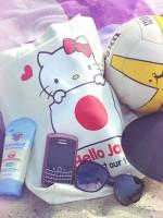 file_27_10811_beach-bag-2012-06