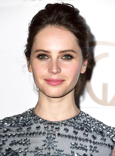Felicity Jones with a Romantic, Tousled, Brunette, Updo Hairstyle Pictures