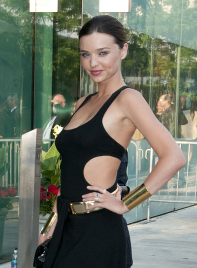 Miranda Kerr Long, Chic, Brunette, Updo Hairstyle